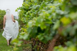 Stonewall Estates Niagara vineyard Wedding Film